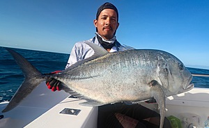 Another arm stretching Coral Sea GT.