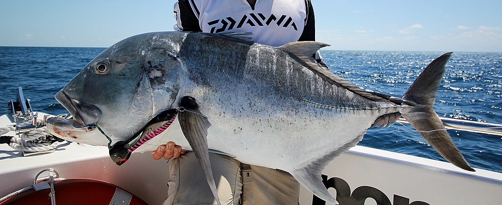 Big GT on our sportfishing charters