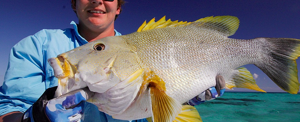 Our full day charters turn up all sorts of fish